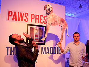 Photoblog | 3rd Annual Paws for the Cause Gala
