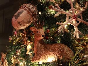 12 Trees of Christmas @ Gardiner Museum