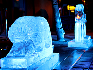Ice, Wine & Dine on Elm St | Winter Magic Festival