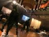 dinosaurus-rex-venetian-ball-2013088-jpg