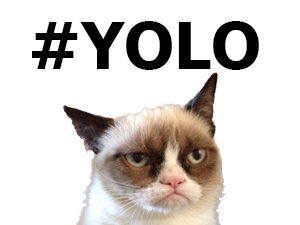 My Thoughts on #YOLO